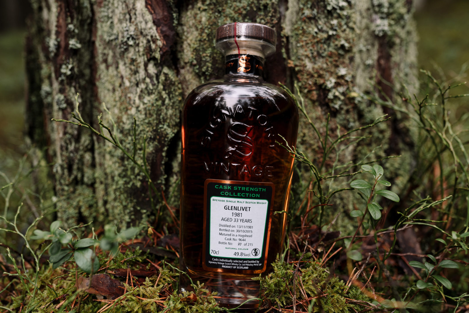 Glenlivet 33 Year Old by Signatory