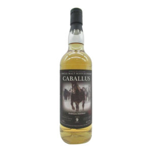 Ardmore 9 Year Old - Caballus